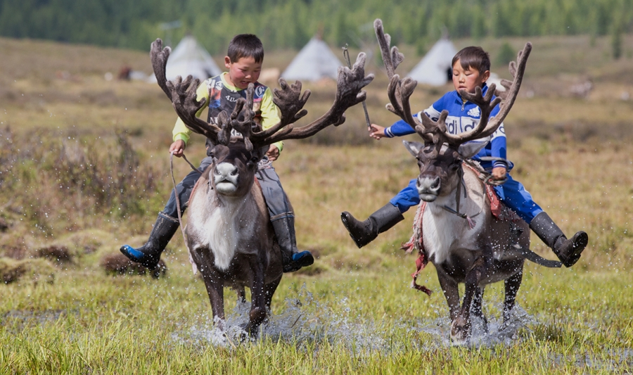photos/olloo_mn_1530094391_Tsaatan-Reindeer-People_Mongolia.jpg